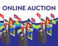 Fowey Festival Online Auction - A look at the du Maurier related items