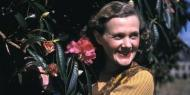 The Daphne du Maurier Society of North America is meeting on Sunday 1st March 2020